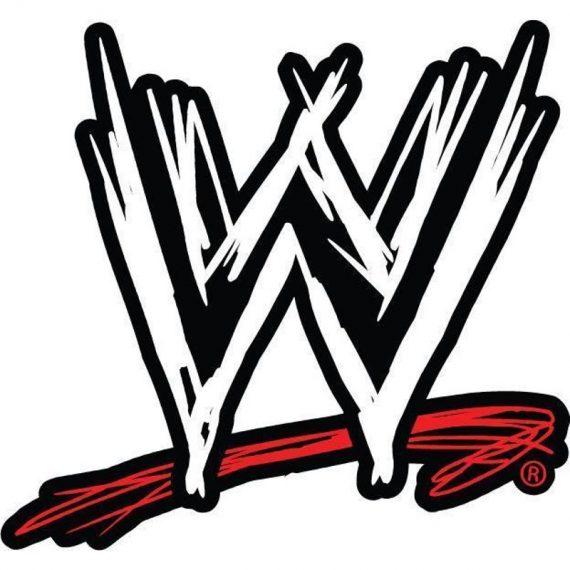 Choose Size/Color- WWE LOGO Decal Removable WALL STICKER Home Decor Art Raw  Does Not Apply